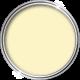 Thermicoat Pro Elastomeric