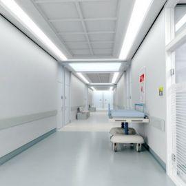 Antibacterial MRSA Resistant Floor Paint